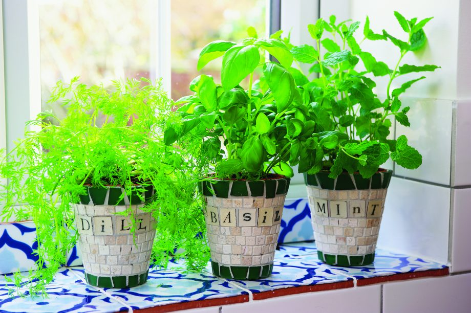 How to make mosaic planters