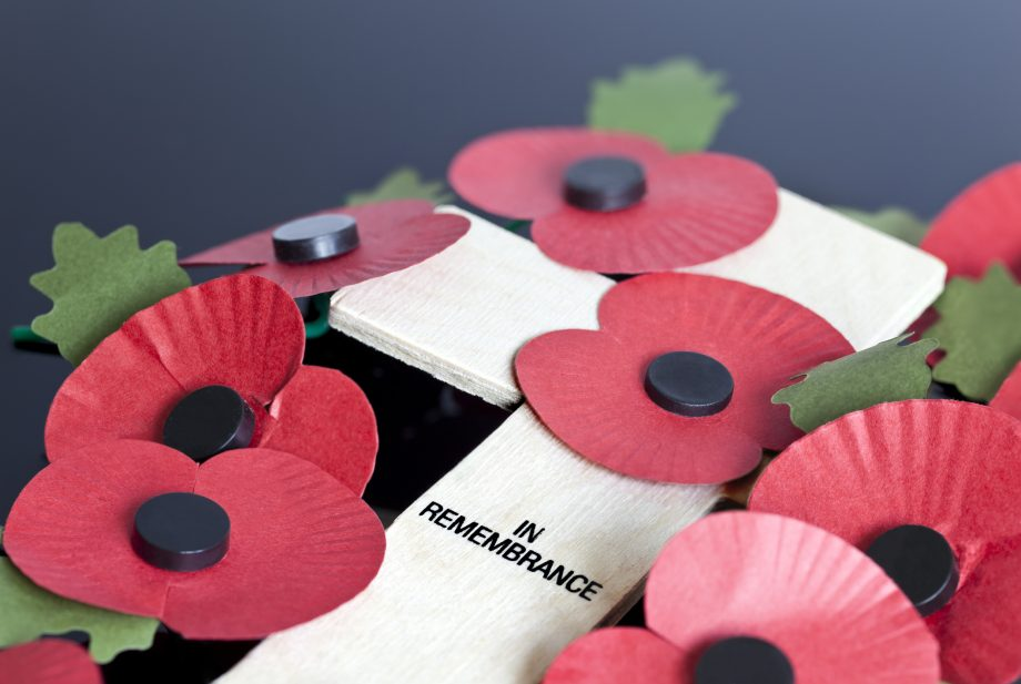 Poppies for Remembrance Day reminding people when do you wear a poppy