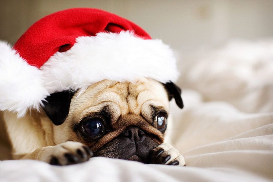 11 agonising stages of the post christmas blues - Post Christmas Blues