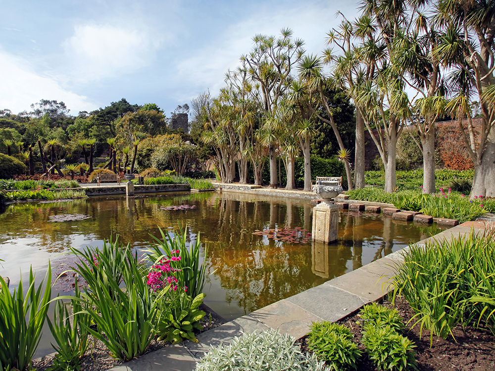 Logan Botanic Garden - Scottish Staycation Locations That Look Like They May Be Overseas