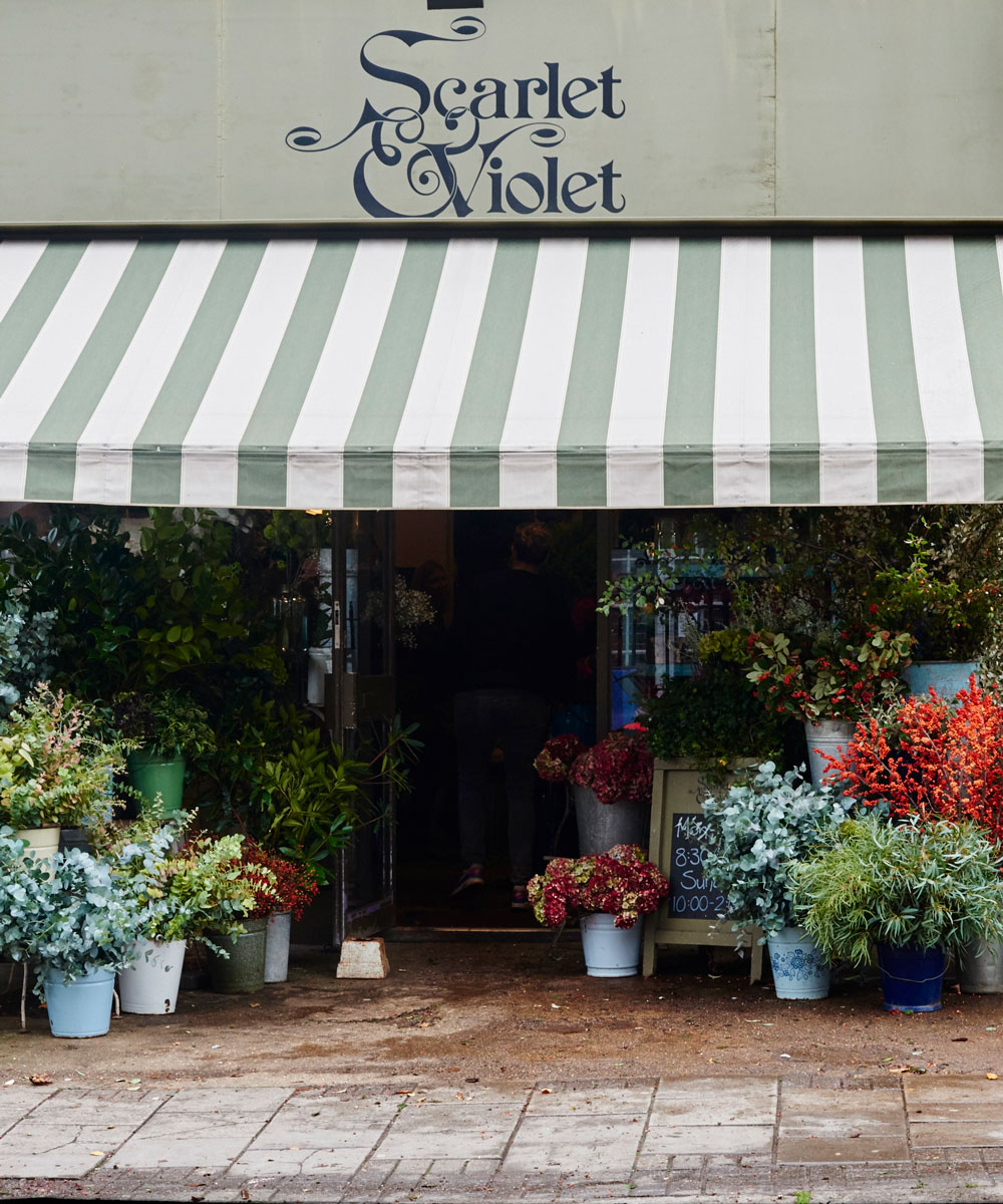 Making a Christmas wreath – top florist Scarlet & Violet shows us how