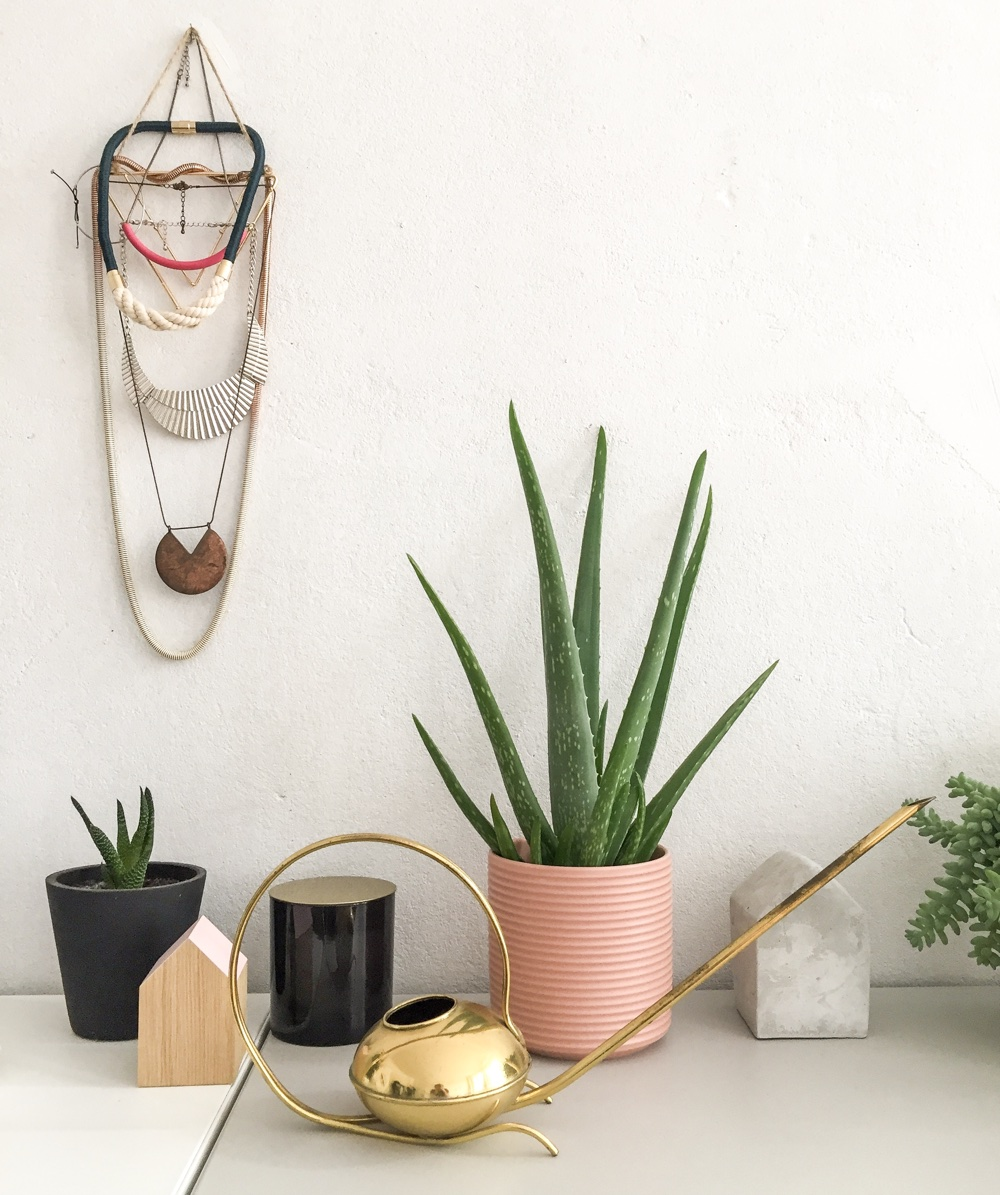 10 top air purifying plants for your home office according to Google