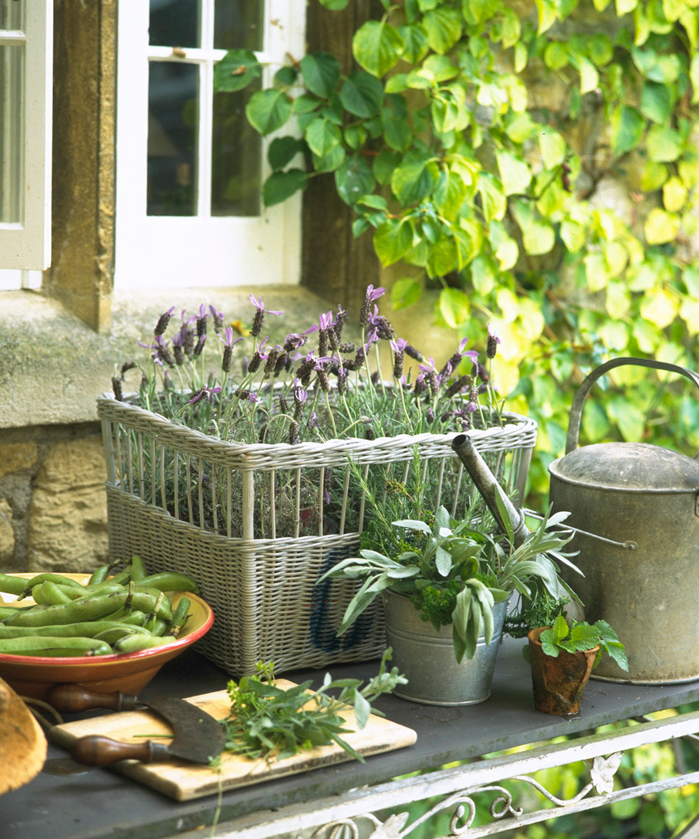 How to create a herb garden at home – Herb garden ideas