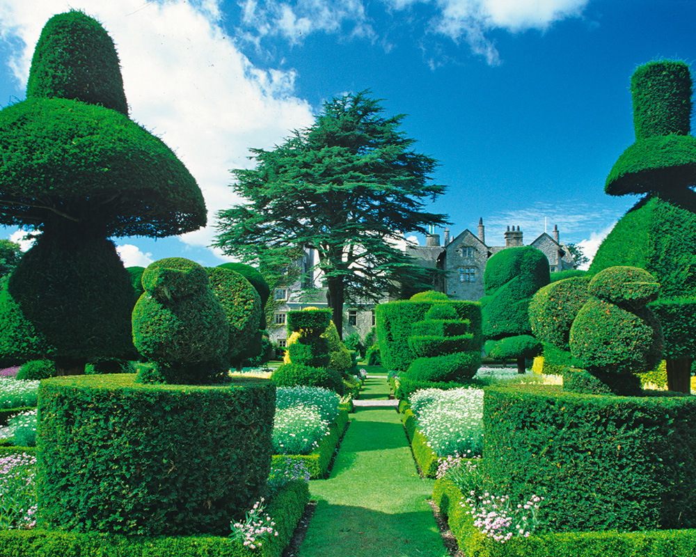 The best British gardens that you can visit this summer